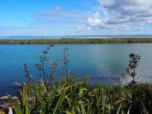Te Waihora/Lake Ellesmere