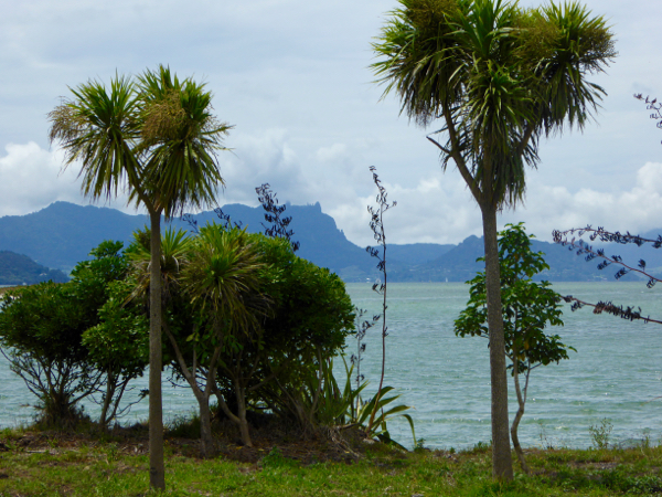 The View from Limestone Island to Mt Manaia