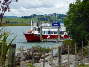MV Waipapa - our transport to the island